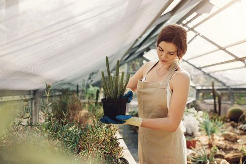 Zadbaj o swój ogród przed każdym sezonem