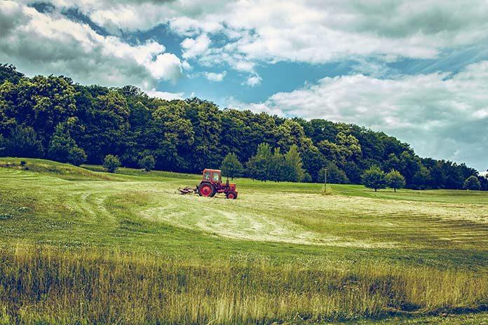 Kupujemy ciągniki rolnicze - 3 praktyczne porady
